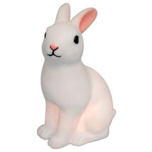 Luce notturna rabbit