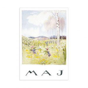 Cartolina mese Maggio Elsa Beskow