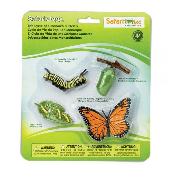 Set ciclo della vita della farfalla Safari LTD