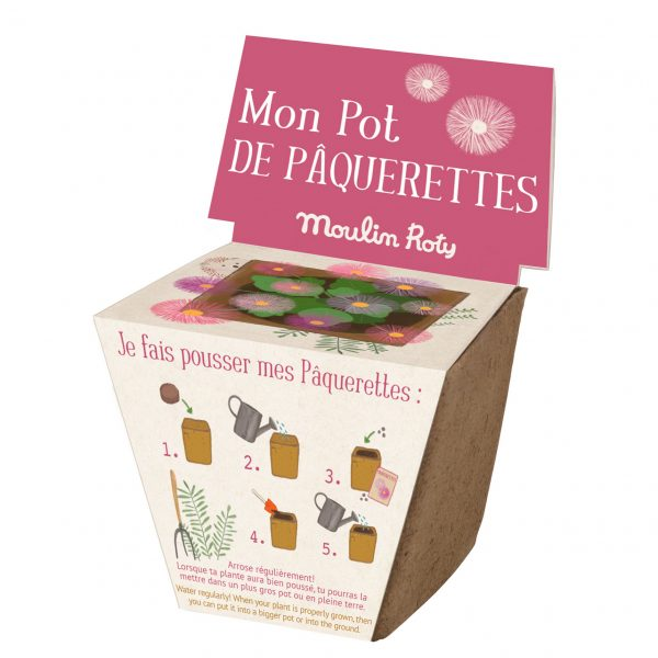 Kit vaso semi margherite Le Jardin Moulin Roty