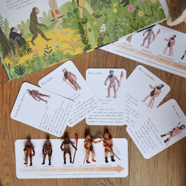 Carte apprendimento Baboo L'evoluzione degli ominidi