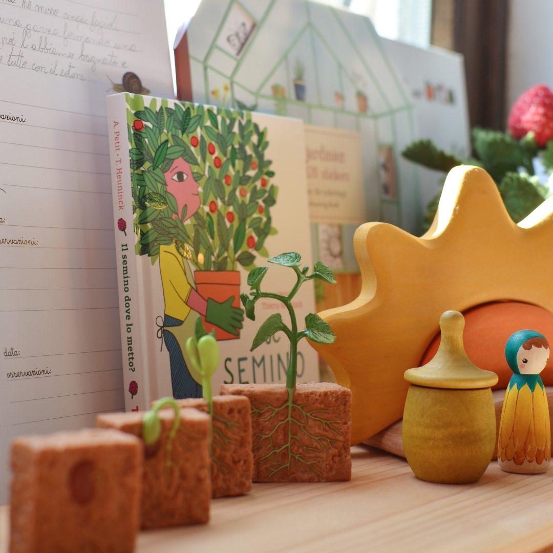 Carte-apprendimento-Baboo-frutta-e-ortaggi-98-carte-+-24-Schede-didattiche (19)